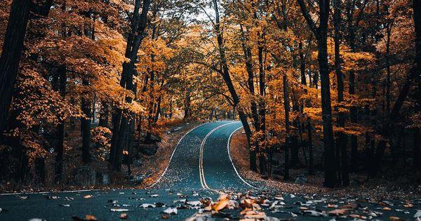 Free Fall Season Wallpaper Autumn Cozy Photo Scenery Pinterest Autumn Cozy