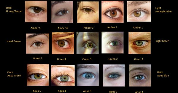 Eye Colour Chart With Photos Of Real Eyes Advanced