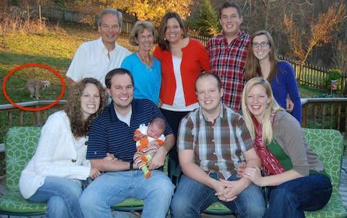 These Family Photos Gone Wrong Will Make You Laugh Til