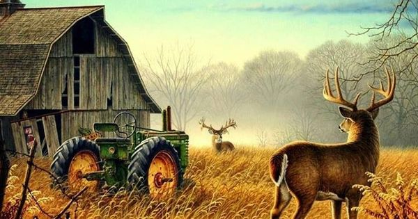 Fall Wallpaper With Deer I See Three Deer If You Count The John These Old Barns