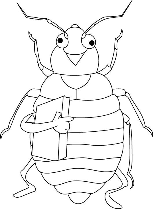 1000+ images about Animals Coloring Pages on Pinterest