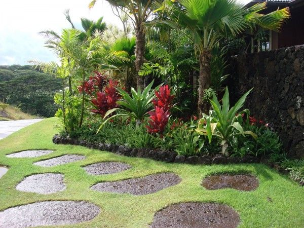 common plants used in hawaii landscape