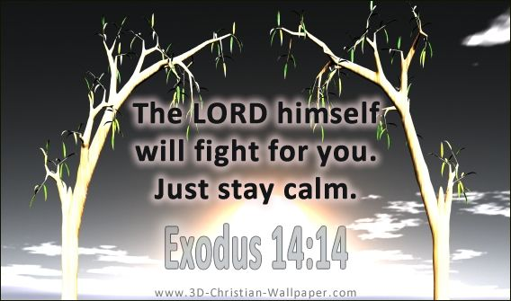 Jesus Bible Quotes Wallpaper The Lord Himself Will Fight For You Just Stay Calm