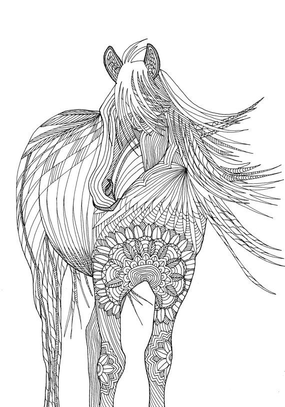 Horse : Amazing Animals Colouring Pages by Joenay