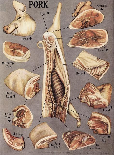 Pork Parts Diagram