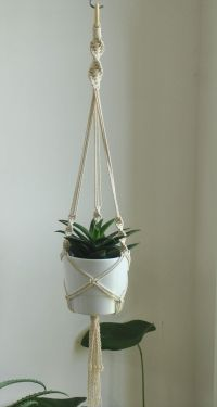 25+ best ideas about Macrame Plant Hangers on Pinterest ...