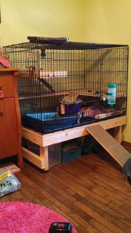 Can you guys share some ideas how to make a bunny cage  BinkyBunnycom  House Rabbit