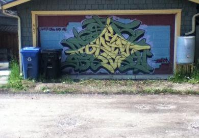 Painted Garage Door Pictures Images Photos Photobucket