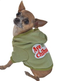 25+ best ideas about Chihuahua clothes on Pinterest