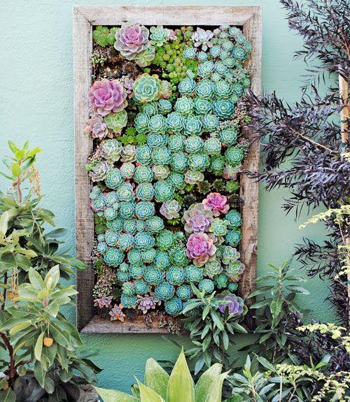 17 Best Ideas About Wall Gardens On Pinterest Succulent Wall