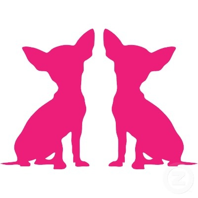 Download 1148 best ^^ I Love Chihuahuas ^^ images on Pinterest