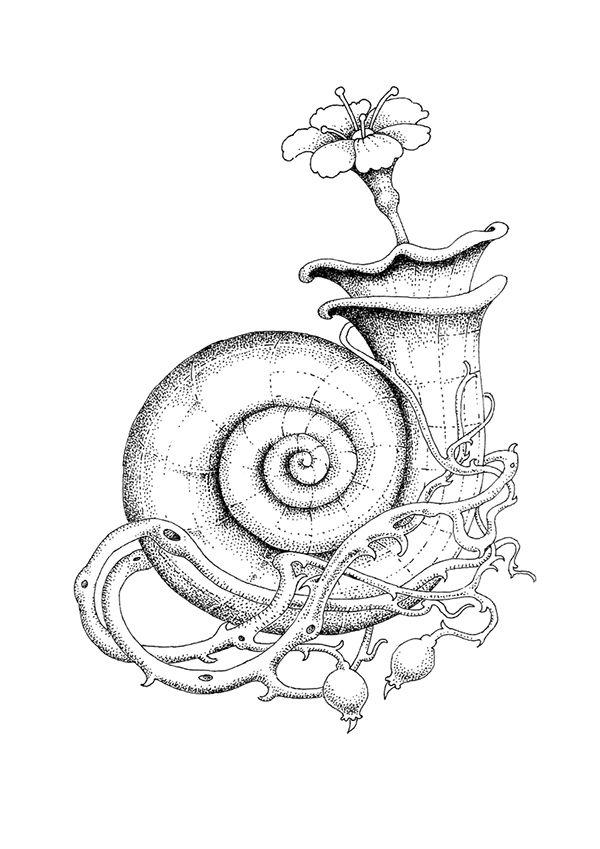 Drawn Shell Flower