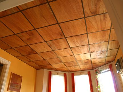 Thin Plywood For Drop Ceiling PERFECT For Our Basement Project Beach House Ideasfinishes