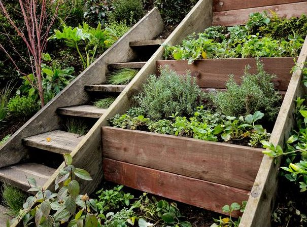 25 Best Ideas About Terraced Landscaping On Pinterest Sloped