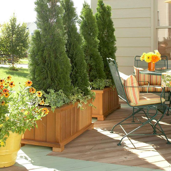 125 Best Images About Patio And Sunroom And Privacy Ideas On
