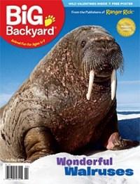 my big backyard magazine - 28 images - bizx your big ...