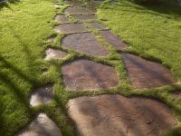 flagstone inlaid grass walk way | Paving | Pinterest ...