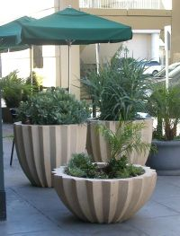 17 Best ideas about Large Concrete Planters on Pinterest ...