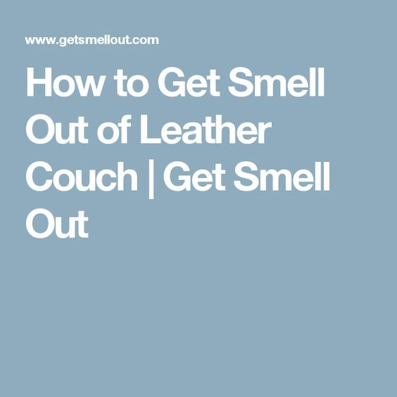 1000 Ideas About Leather Couch Cleaning On Pinterest Leather