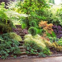 1000+ ideas about Sloped Garden on Pinterest | Hillside ...