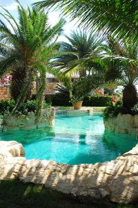17 Best ideas about Tropical Pool on Pinterest | Tropical ...