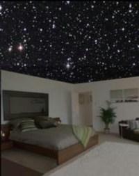 Night sky ceiling | Teen girl night sky bedroom ...