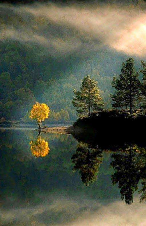 Leaves Fall Desktop Wallpaper Glen Affric Scotland Landscape Pinterest Landscapes