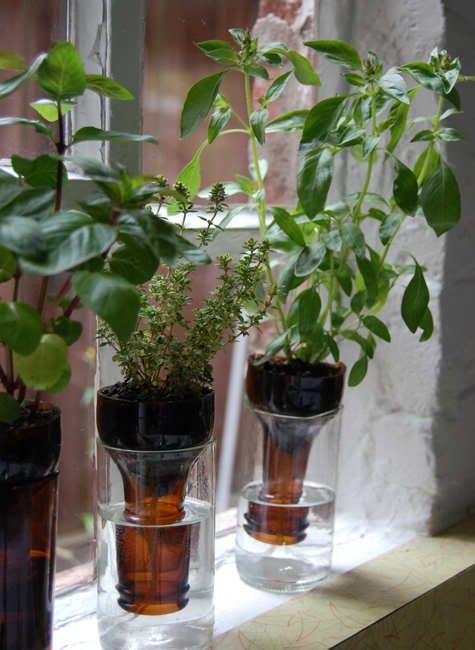 333 Best Images About Herb Garden Ideas On Pinterest Gardening