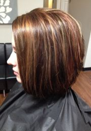 hair color lowlights and highlights