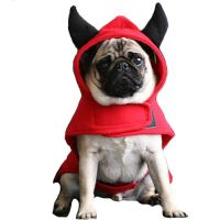 17 Best images about Dog Halloween Costumes on Pinterest ...