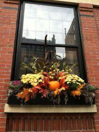 Best 25+ Fall window boxes ideas on Pinterest | Fall ...