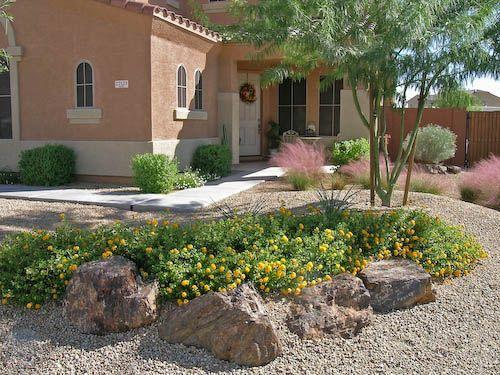 1000 desert landscaping