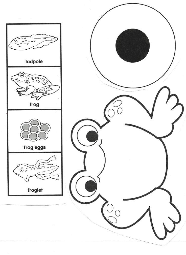 Best 25+ Frog crafts preschool ideas on Pinterest