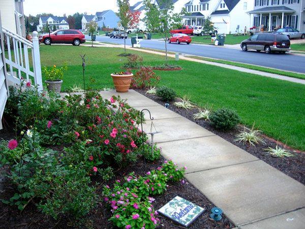 simple design florida yard