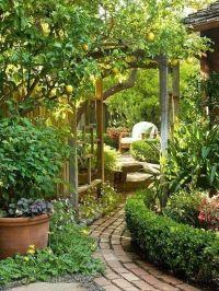 Best 25+ Backyard Retreat ideas on Pinterest | Corner ...