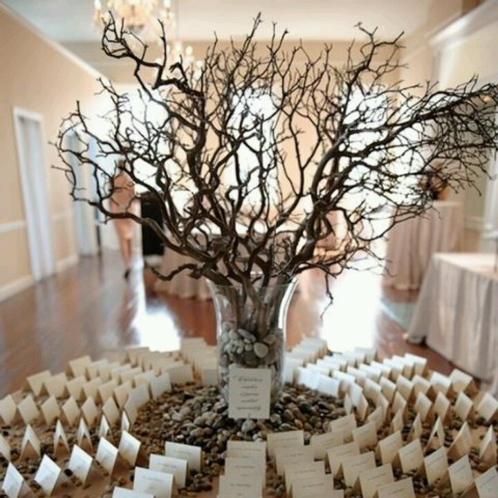 89 best images about wishing tree on Pinterest  Vintage