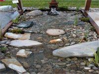 17+ images about Dog Ponds on Pinterest | Gardens ...