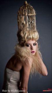 creative hair avant garde bird