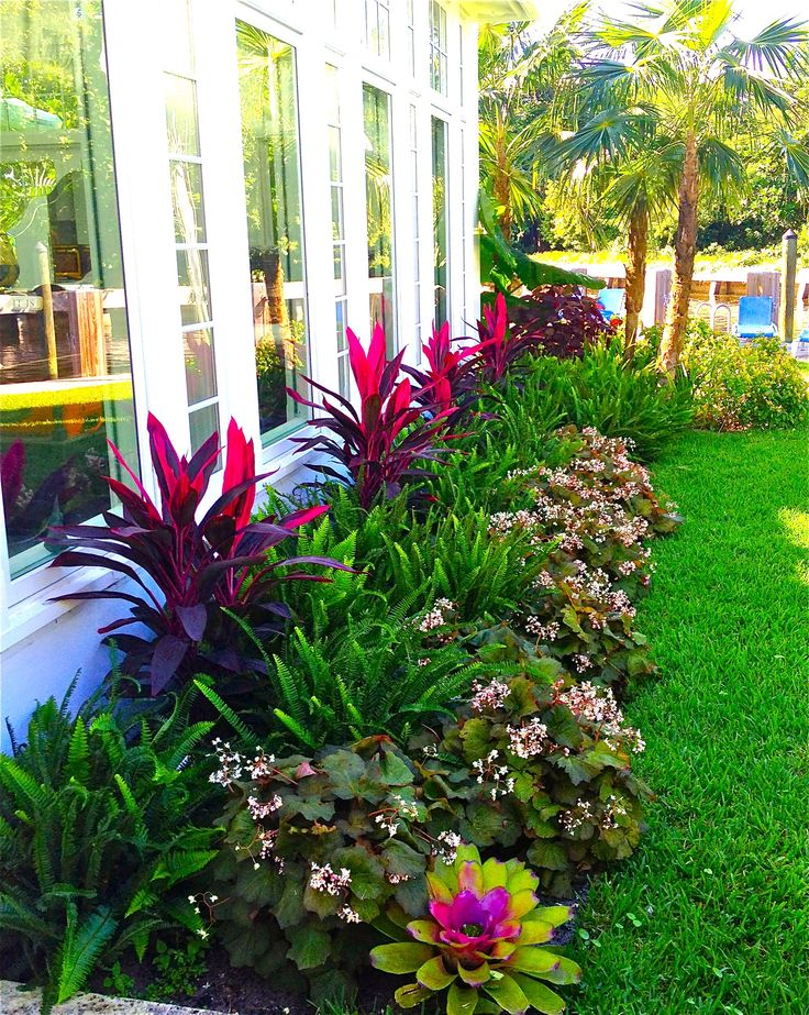 25 Best Ideas About Florida Landscaping On Pinterest Green
