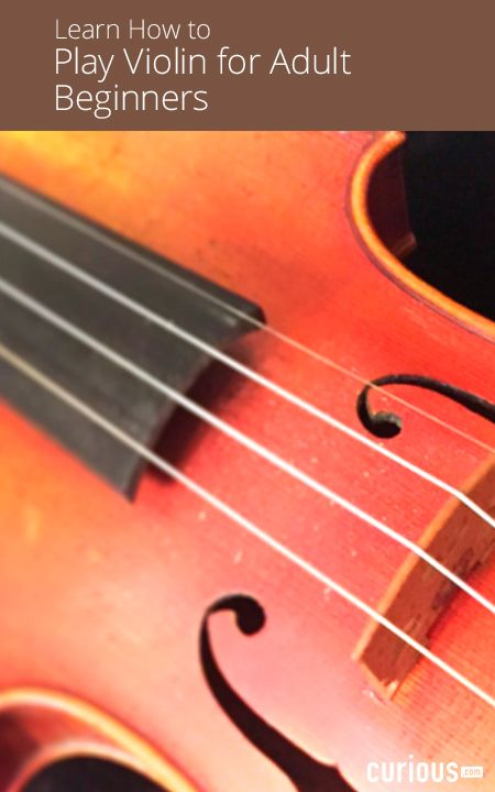 253 best images about MUSIC-----Violin----Learning and ...