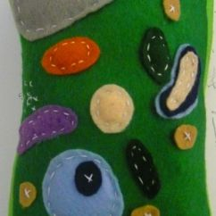 Plant Cell Diagram Project Ideas 2004 Chevy Cavalier Engine Pillow By Bubbles-gal119 | School Projects Pinterest Art, And Pillows