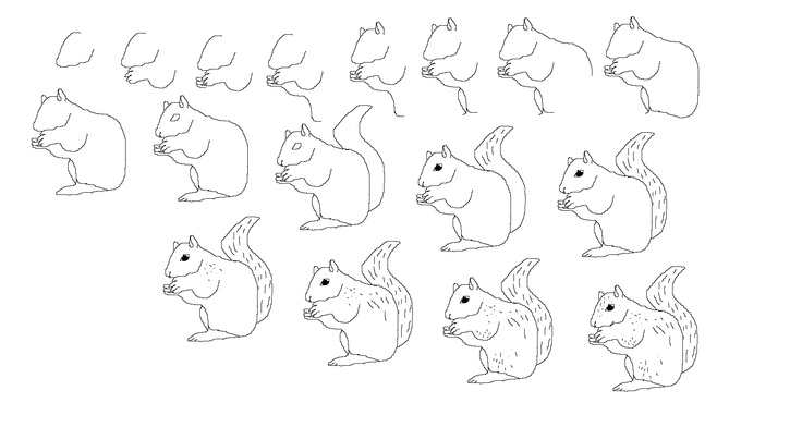 89 best images about How to draw Animals on Pinterest