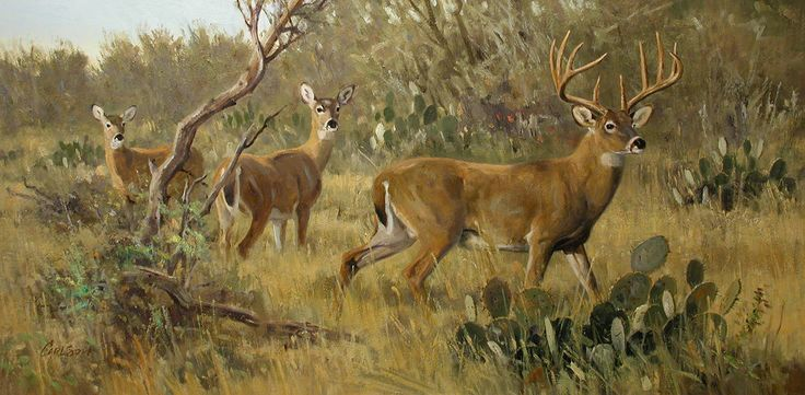 2015 Fredericksburg Art Auction Will Be Amazing Gt Ken