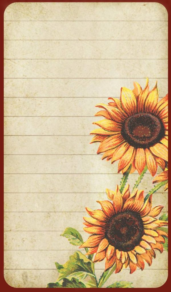 sunflowers lined card with dark