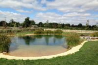 Natural Swimming Pond Designs from Gartenart | ideas for ...