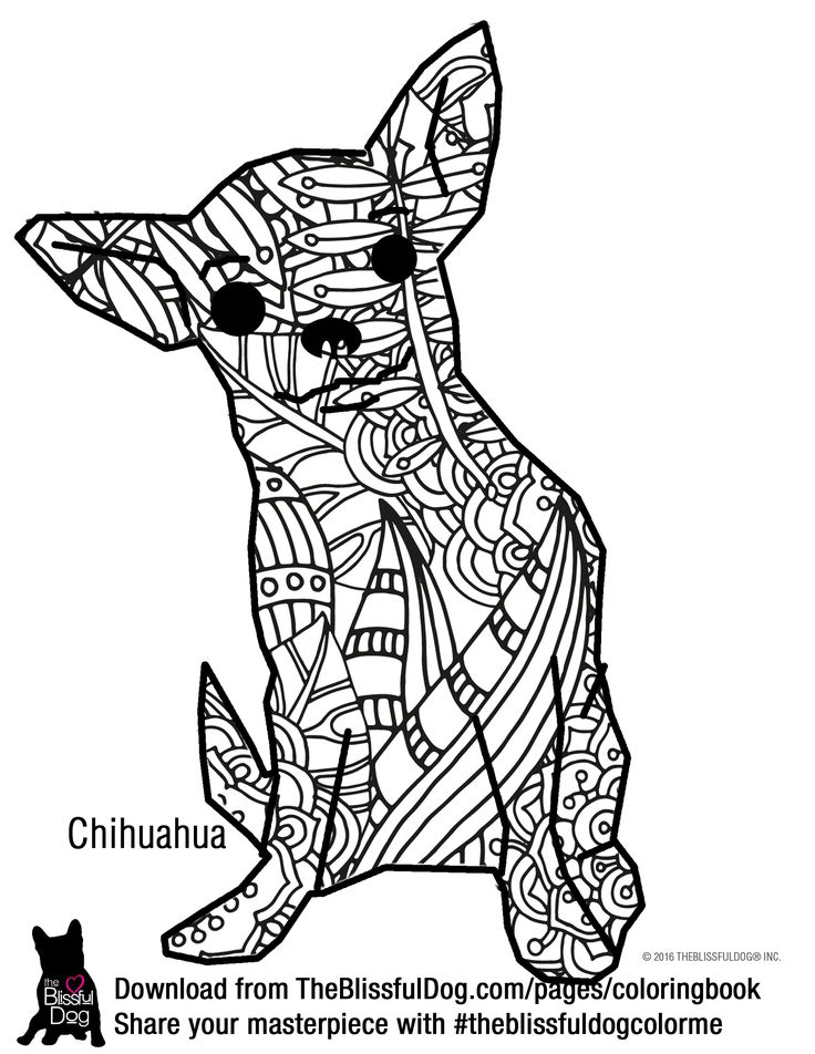 0 images about mandaly zvířata on pinterest
