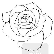 outline rose tattoo drawing simple drawings tattoos traditional realistic sleeve line explore flower stencil tatoo outlines roses transparent designs draw