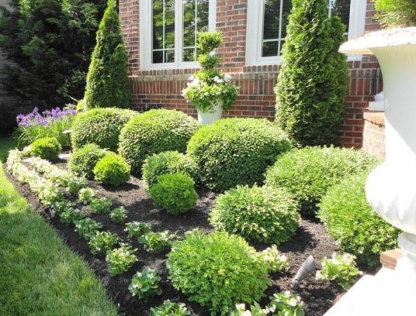 flowerbeds bushes shrubs garden