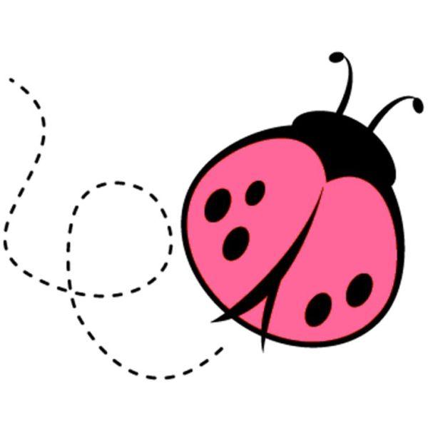 ideas ladybug love