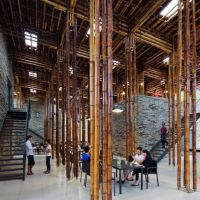 Clustered lengths of bamboo create a forest of columns in ...